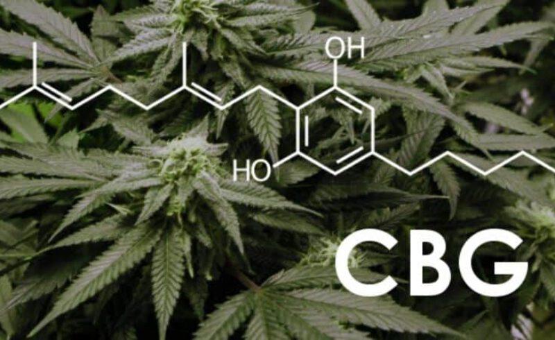Kannabinoidy