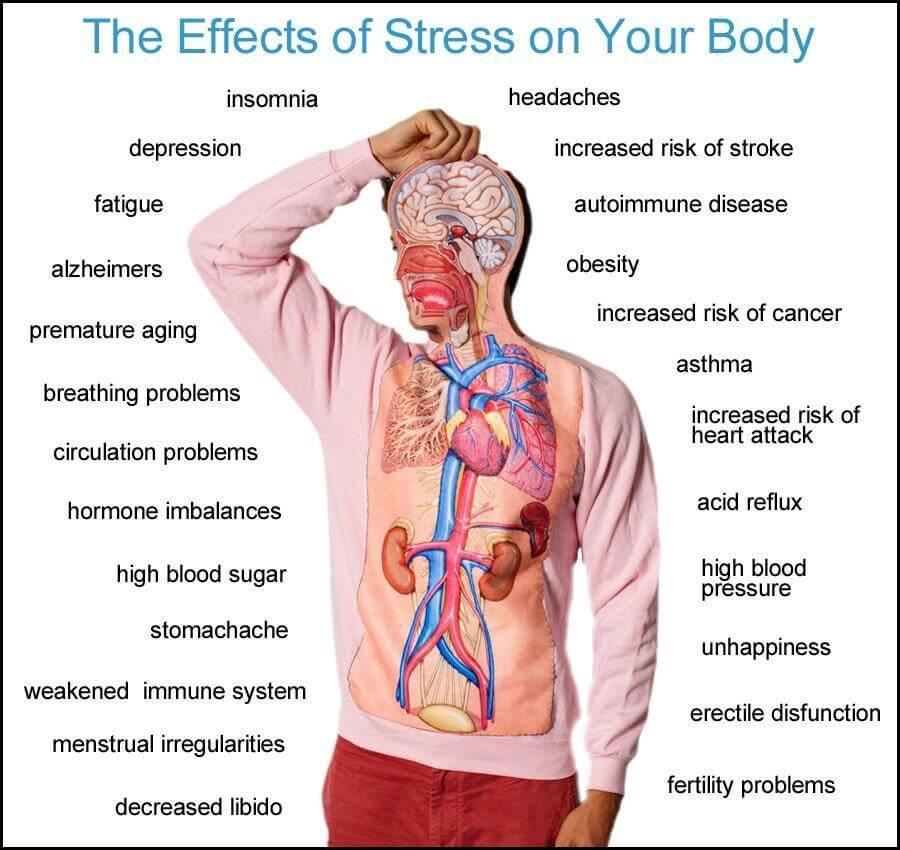 na co pomagają tabletki na stres bez recepty